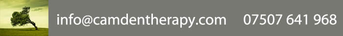 Therapist in North London